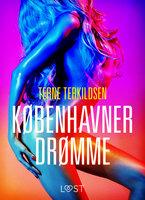 Københavnerdrømme - erotisk novelle - Terne Terkildsen