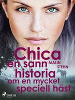 Chica : en sann historia om en mycket speciell häst - Malin Stehn