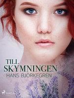 Till skymningen - Hans Björkegren