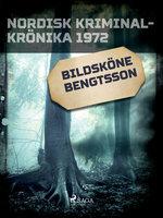 Bildsköne Bengtsson - Diverse