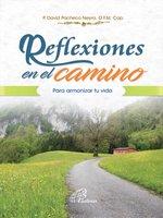 Reflexiones en el camino - Padre David Pacheco Neyra