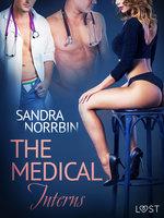 The Medical Interns: Erotic Short Story - Sandra Norrbin