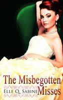 The Misbegotten Misses: A Box Set - Elle Q. Sabine