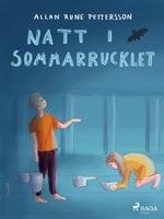 Natt i Sommar-rucklet - Allan Rune Pettersson