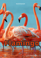 Flamingo - Henrik Enemark