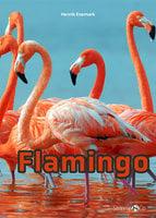 Flamingo - Henrik Enemark