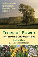 Trees of Power - Akiva Silver