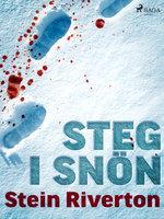 Steg i snön - Stein Riverton