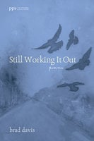 Still Working It Out - Brad Davis