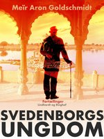 Svedenborgs ungdom - Meir Aron Goldschmidt