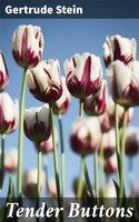 Tender Buttons - Gertrude Stein