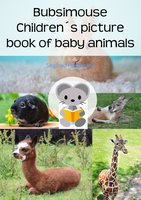 Bubsimouse Children's Picture Book of Baby Animals - Siegfried Freudenfels