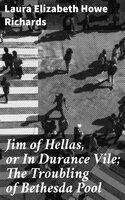 Jim of Hellas, or In Durance Vile; The Troubling of Bethesda Pool - Laura Elizabeth Howe Richards