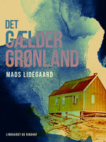 Det gælder Grønland - Mads Lidegaard