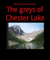 The Greys of Chester Lake - Mostyn Heilmannovsky