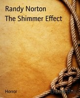 The Shimmer Effect - Randy Norton