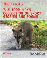 The Todd Hicks Collection of Short Stories and Poems - Todd Hicks