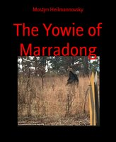 The Yowie of Marradong - Mostyn Heilmannovsky