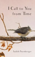 I Call to You from Time - Judith Sornberger
