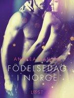 Födelsedag i Norge - erotisk novell - Andrea Hansen