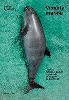 Vaquita marina - Brooke Bessesen