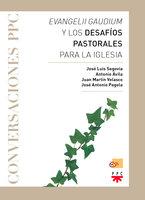 Evangelii gaudium y los desafíos pastorales para la Iglesia - Juan Martín Velasco, José Antonio Pagola Elorza, José Luis Segovia Bernabé, Antonio Ávila Blanco