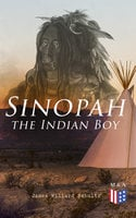 Sinopah the Indian Boy - James Willard Schultz