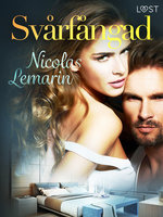 Svårfångad - erotisk novell - Nicolas Lemarin
