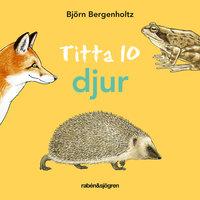 Titta 10 djur : - Björn Bergenholtz