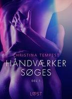 Håndværker søges, del 1 - Erotisk novelle - Christina Tempest