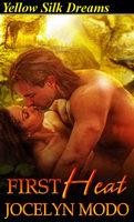 First Heat: A Sci Fi romance - Jocelyn Modo