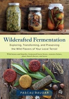 Wildcrafted Fermentation: Exploring, Transforming, and Preserving the Wild Flavors of Your Local Terroir - Pascal Baudar