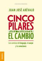 Cinco pilares para transitar el cambio - Juan José Arévalo