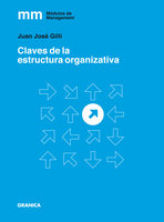 Claves de la estructura organizativa - Juan José Gilli