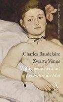 Zwarte Venus - Charles Baudelaire