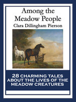 Among the Meadow People - Clara Dillingham Pierson