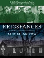 Krigsfanger. Et billeddrama om krigsfanger i Danmark under 1. verdenskrig - Bent Blüdnikow