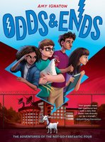 Odds & Ends (The Odds Series #3) - Amy Ignatow