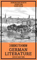 3 Books To Know German Literature - Johann Wolfgang von Goethe, Theodor Storm, Theodor Fontane, August Nemo