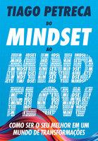 Do Mindset ao Mindflow - Tiago Petreca