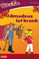 Bibi & Tina: Amadeus ist krank - Theo Schwartz