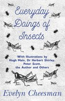 Everyday Doings of Insects - With Illustrations by Hugh Main, Dr Herbert Shirley, Peter Scott, the Author and Others - Evelyn Cheesman
