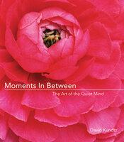 Moments in Between - David Kundtz