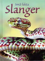 Slanger - James Maclaine