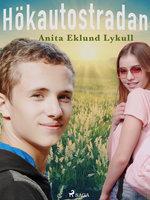 Hökautostradan - Anita Eklund Lykull