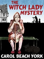 The Witch Lady Mystery - Carol Beach York