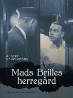Mads Brilles herregård - Albert Gnudtzmann