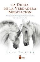 La dicha de la verdadera meditación - Jeff Foster
