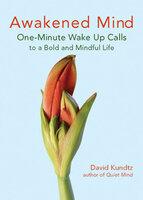 Awakened Mind - David Kundtz
