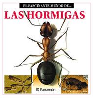 Las Hormigas - Maria Àngels Julivert